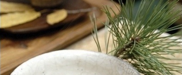 Korean Fermented Pine Needle Tea